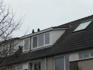 Dakkapel schuin dak kunststof