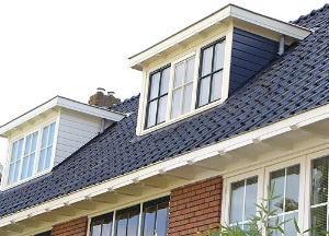 dakkapel plat dak blauw met wit